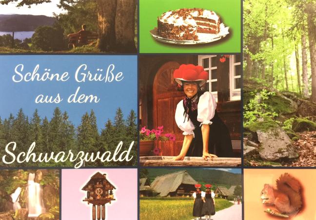 Ausstellung Waldschwarzschoen
